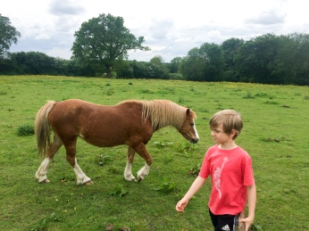 James and a pony