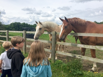 Eric and Fiona with the horses