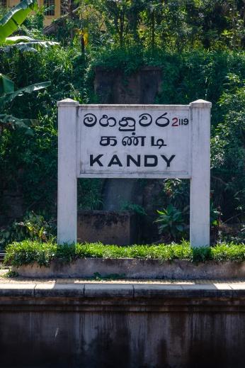 srilanka-19