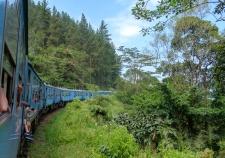 srilanka-20