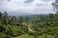 srilanka-25
