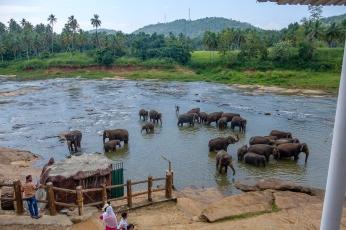 srilanka-7